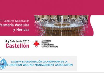 XXVII Congreso Nacional de Enfermería Vascular Castellón 2015