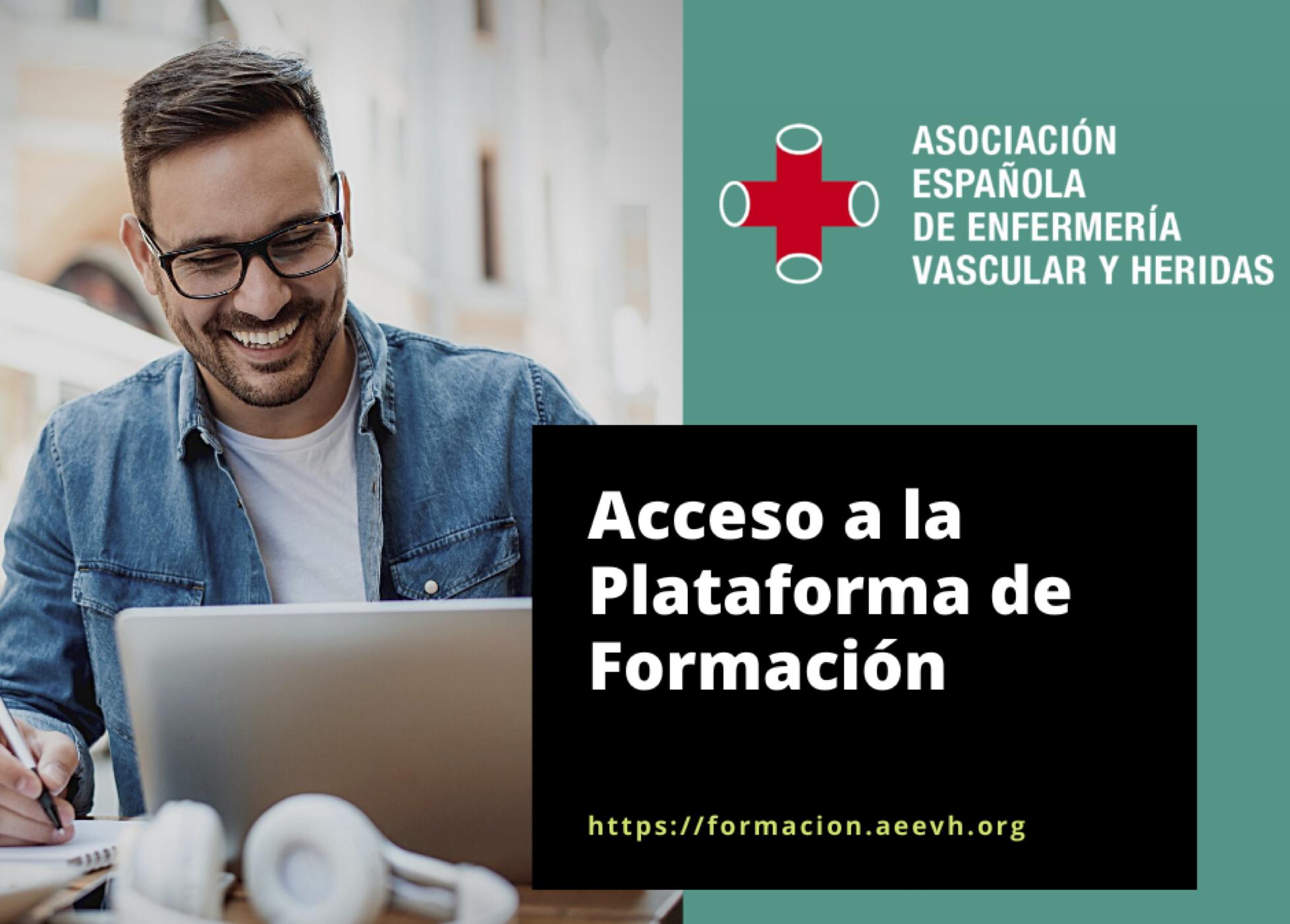 Acceso a la Plataforma de Formación de la AEEVH